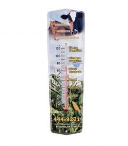 Termometre imprimate