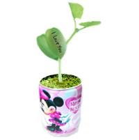 Plante conserva promotionale